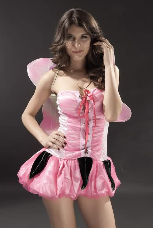 Cute and Pretty Pink Pixie Fairy Costume for Women